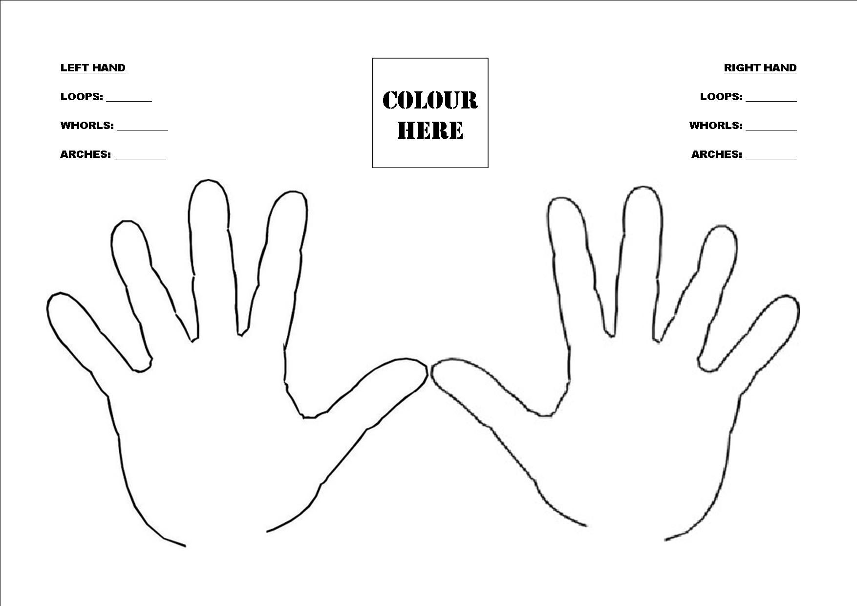Fingerprint Patterns For Kids