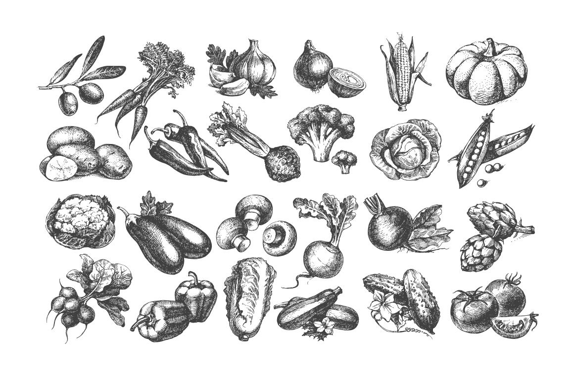 Set Of Hand Drawn Vector Vintage Vegetables Sketches With