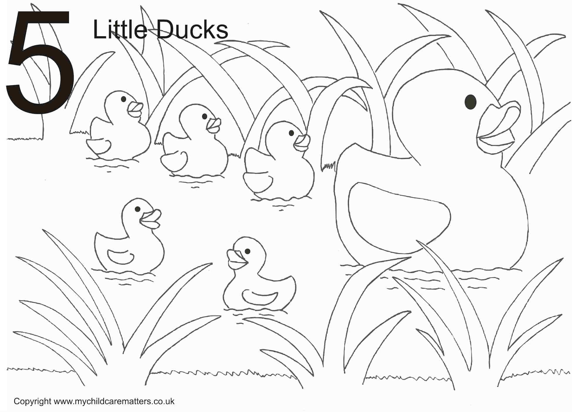 Little Ducks Colouring Page 5 Little Ducks Colouring