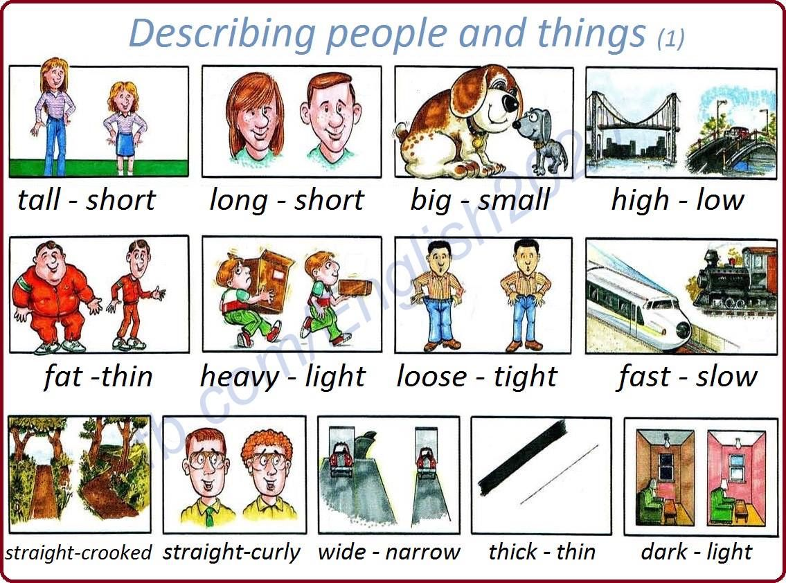 Describing People And Things 1