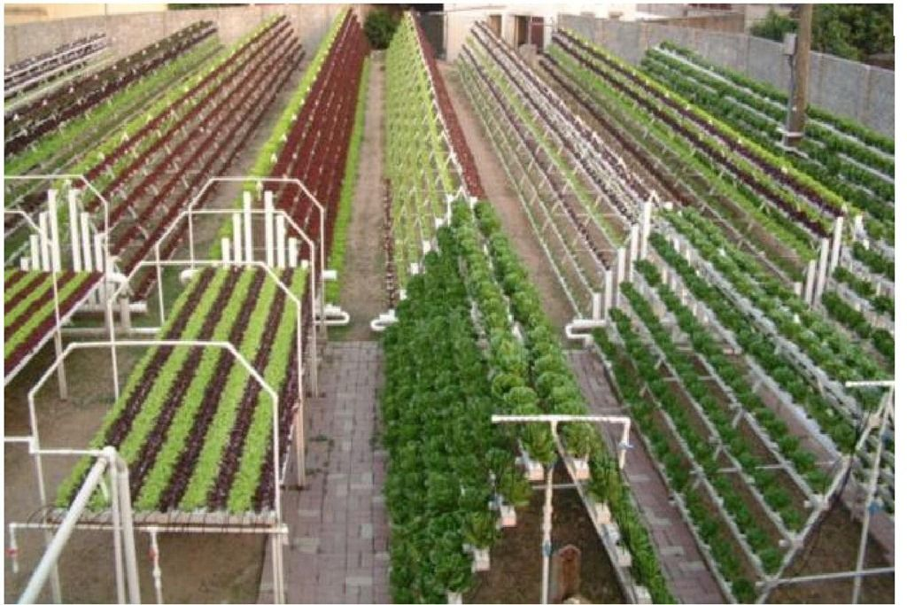 commercial aquaponics system the next photo is a large Commercial Hydroponic Systems Design id=64111