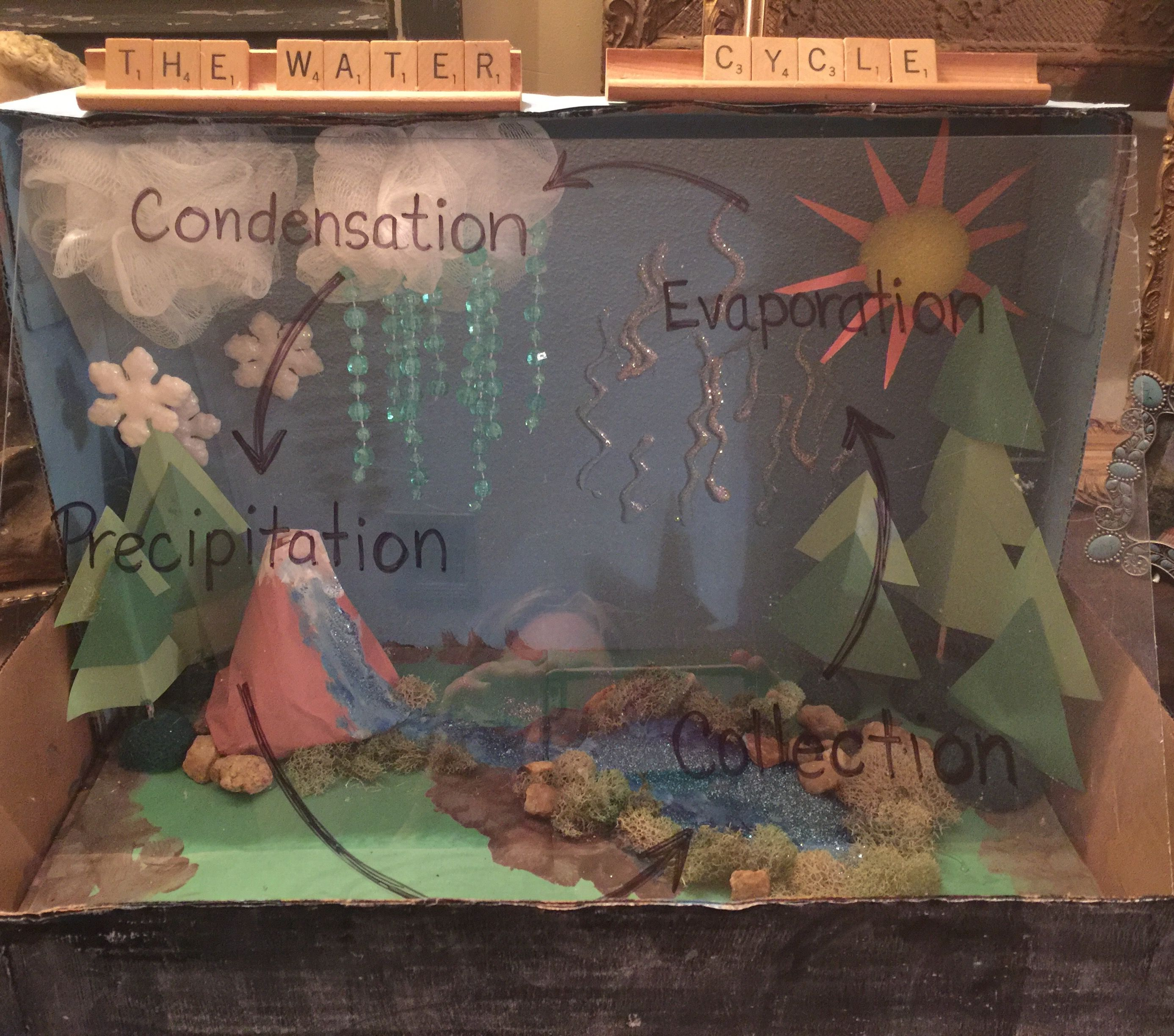 Water Cycle Project 4th Grade
