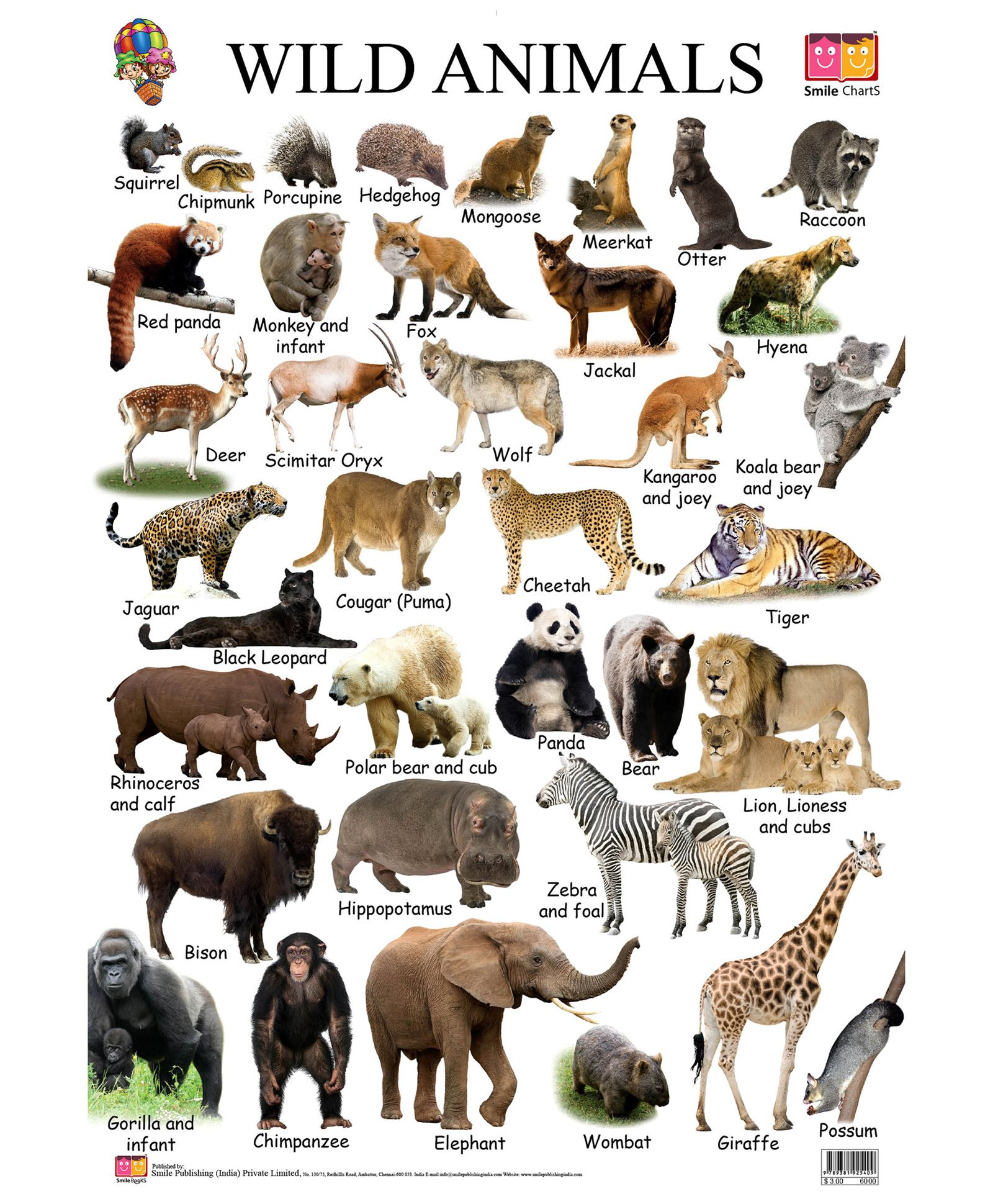 Hq Wallpapers Plus Provides Different Size Of Wild Animals