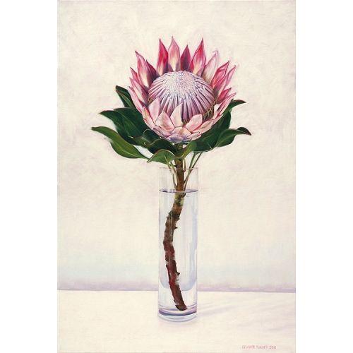 Still Life With King Protea Art Pinterest King