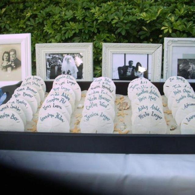 Best 25 Sand Dollar Wedding Ideas On Pinterest Sand