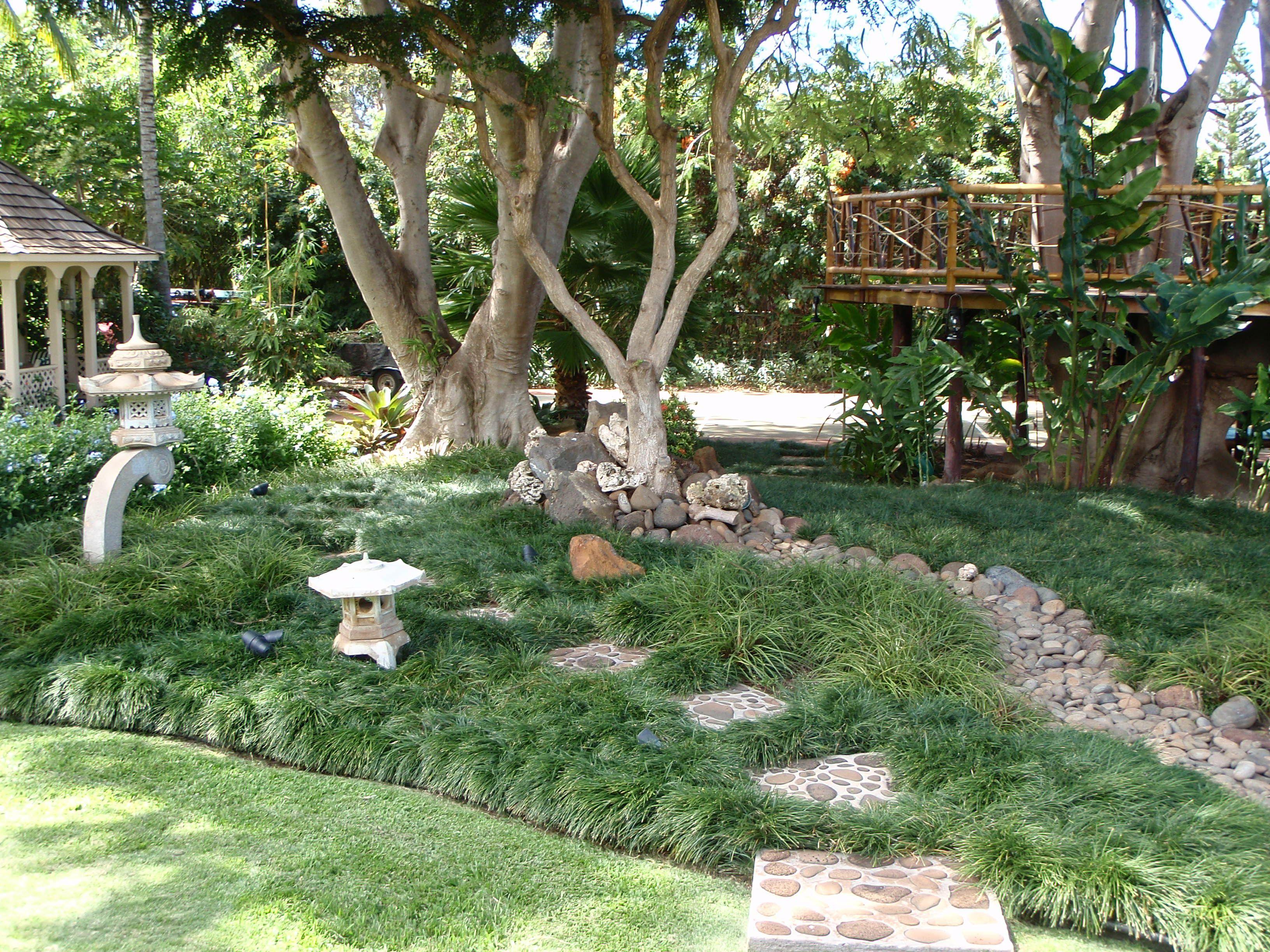 No-Mow Mondo Grass Zen Garden | Outdoor Living | Pinterest on No Mow Backyard Ideas  id=29148