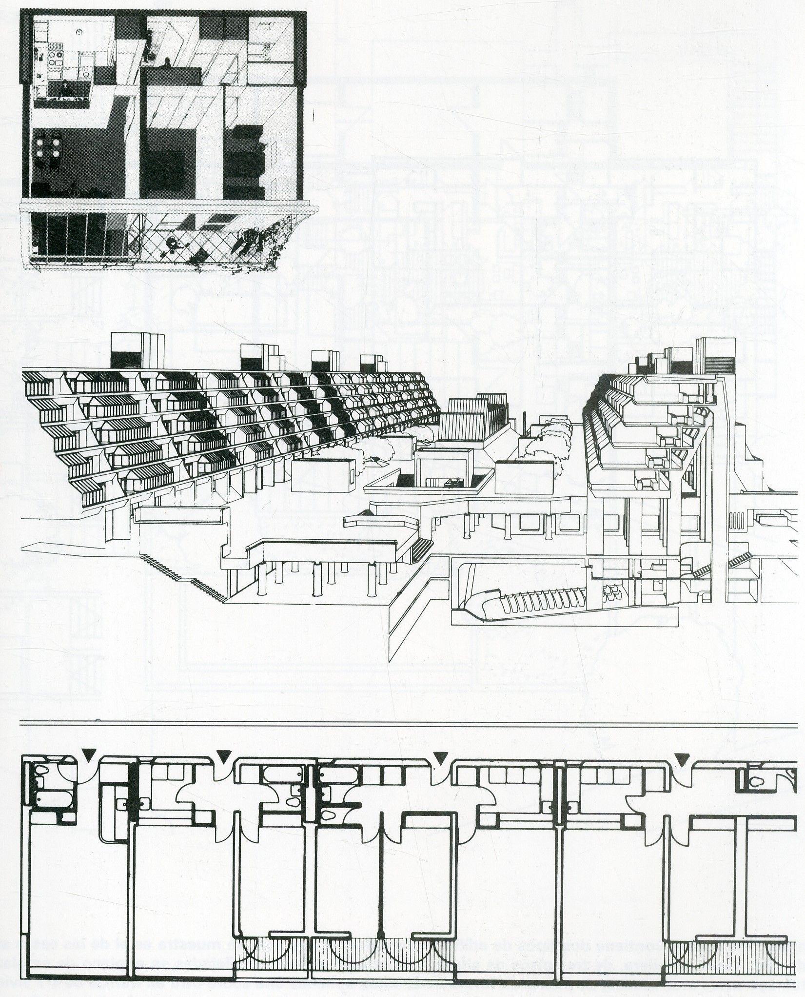 Pagina 125 Schneider Frederike Atlas De Plantas
