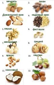 Какие виды орехов бывают - названия, фото