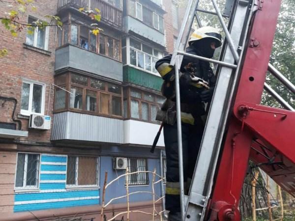 В Днепре восемь пожарных спасали кота, - ФОТО | Новости