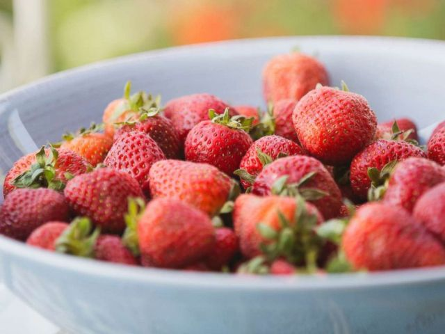 PHOTO: A bowl of strawberries.