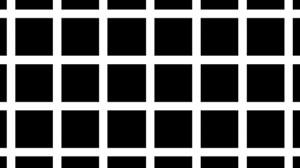 optical illusions school presentation # 27