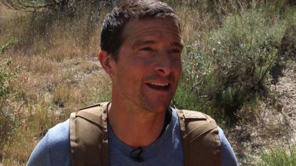 New Bear Grylls challenge tests the art of survival of ...