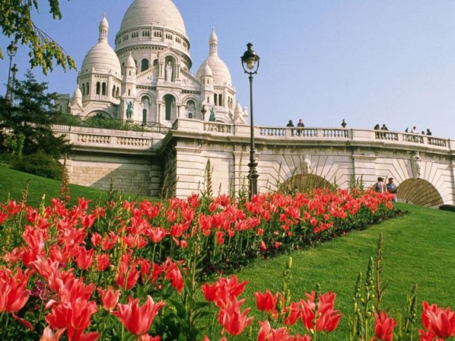 PHOTO: Sacre Coeur is surrounded by pink tulips in this spring, in this undated stock photo, in Paris.