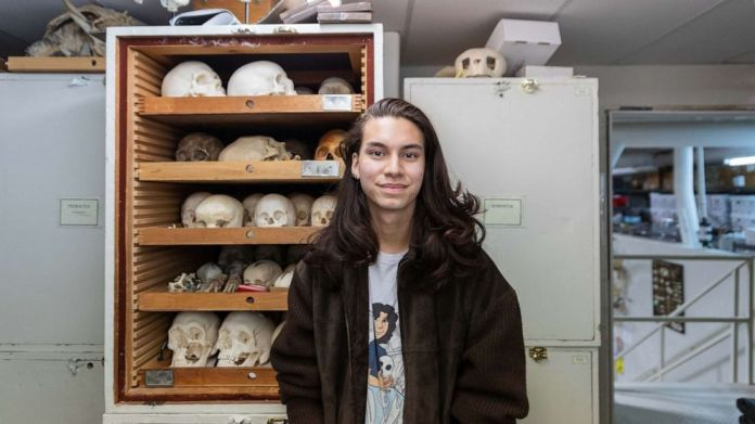 Watch TikTok consumer sells human bones, ignites moral debate online – ABC U.S.  News