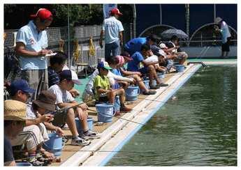 プールから転用された「柏ふれあい釣り堀」=神奈川県海老名市