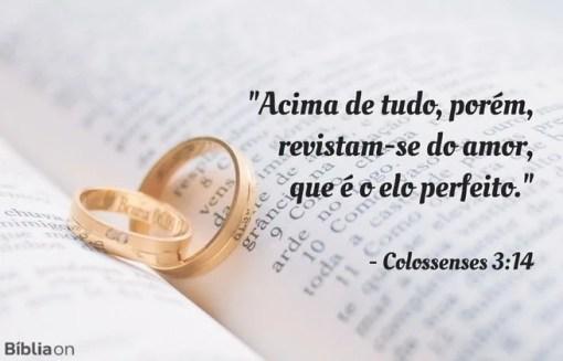 Acima de tudo, porém, revistam-se do amor, que é o elo perfeito. Colossenses 3:14