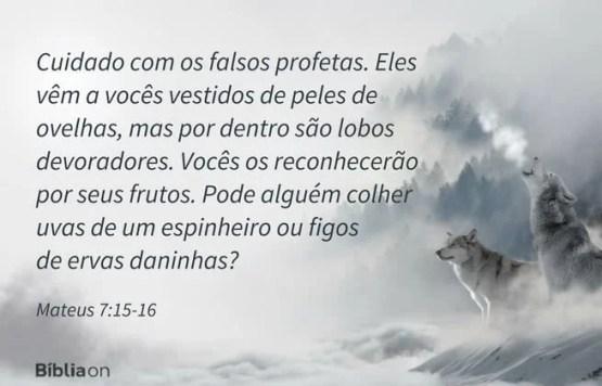 Cuidado com os falsos profetas. Eles vêm a vocês vestidos de peles de ovelhas, mas por dentro são lobos devoradores. Vocês os reconhecerão por seus frutos. Pode alguém colher uvas de um espinheiro ou figos de ervas daninhas? Mateus 7:15-16