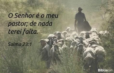 O Senhor é o meu pastor; de nada terei falta. Salmo 23:1