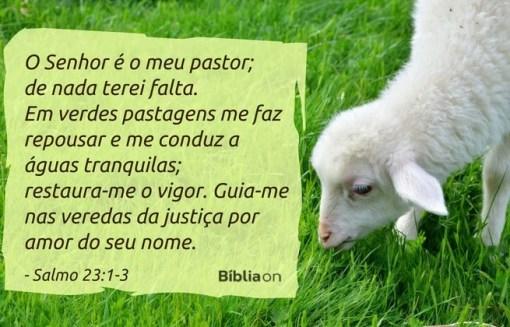 O Senhor é o meu pastor; de nada terei falta. Em verdes pastagens me faz repousar e me conduz a águas tranquilas; restaura-me o vigor. Guia-me nas veredas da justiça por amor do seu nome. Salmo 23:1-3