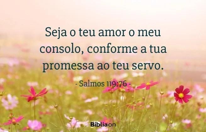 Seja o teu amor o meu consolo, conforme a tua promessa ao teu servo. Salmos 119:76
