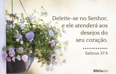 Deleite-se no Senhor, e ele atenderá aos desejos do seu coração. Salmos 37:4