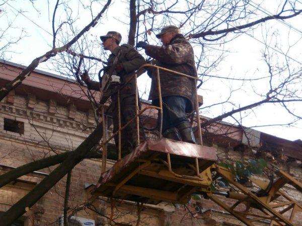 Одну из центральных улиц Харькова перекрыли. Туда пригнали ...