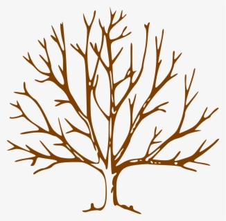 Free Bare Trees Clip Art With No Background Clipartkey