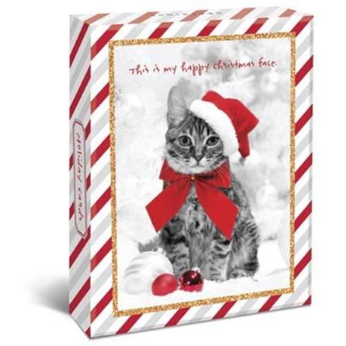 Holiday Cats Boxed 4 X 6 Christmas Cards 20 Glitter