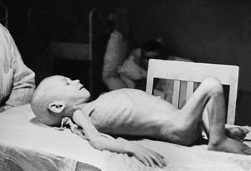 Ужасы блокадного Ленинграда блокада, воспоминания, история, ленинград