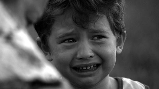 9. Слёзы. Защитные системы, организм, человек