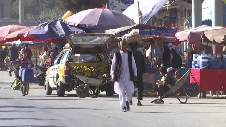 Watch Business every day – UN launches 0 million belief fund to fight Afghanistan's 'economic implosion'  – France 24 information