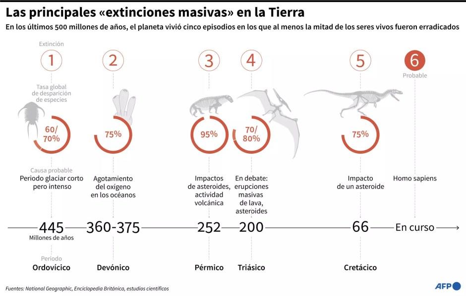 Cronología de los cinco episodios en los que al menos la mitad de los seres vivos fueron erradicados del planeta en los últimos 500 millones de años y datos de los organismos que han desaparecido