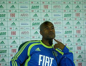 Marcos Assunção, Palmeiras coletiva