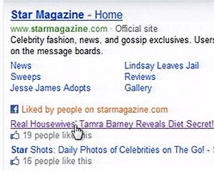 Recurso no Bing mostrará quantos amigos 'curtiram' o link buscado (Foto: Reprodução)