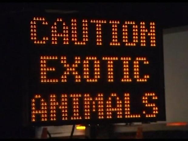 Aviso alerta população do risco de encontrar animais selvagens soltos. (Foto: BBC)