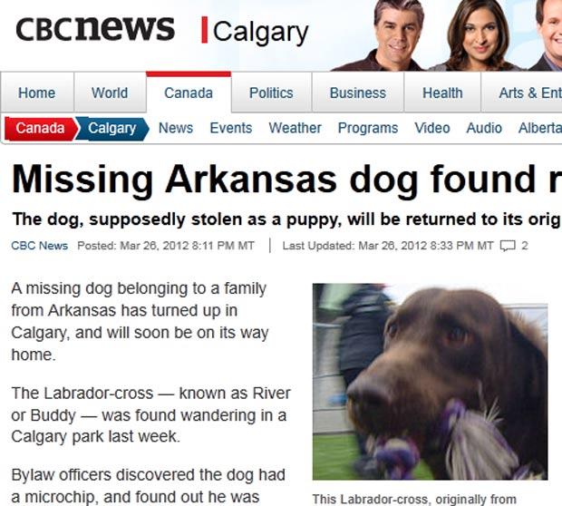 Após sumir há quatro anos nos EUA, cão foi encontrado no Canadá. (Foto: Reprodução)
