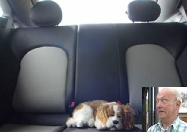 Polícia quebrou vidro de Mercedes para salvar cão de pelúcia. (Foto: Reprodução)