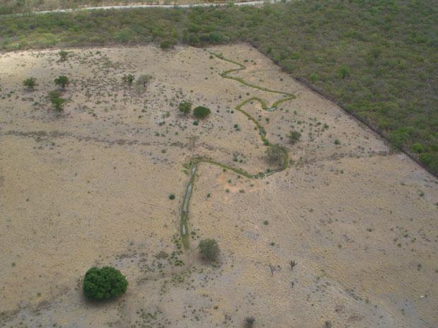 Córrego para bebida de gado desviado da Adutora do Oeste, no trecho Estação Elevatória 2 (Foto: Divulgação/ Compesa)