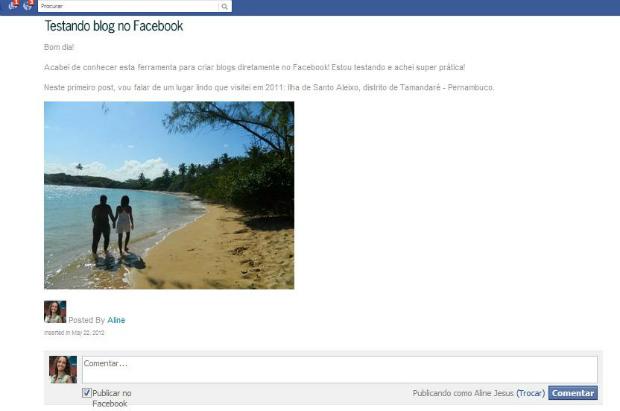 Formato do post publicado no Facebook (Foto: Aline Jesus/Reprodução)