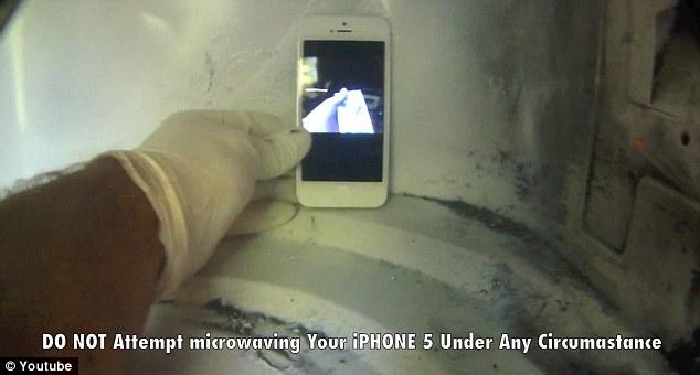 O iPhone 5 mal chegou às lojas e já foi parar dentro do micro-ondas (Foto: Reprodução)