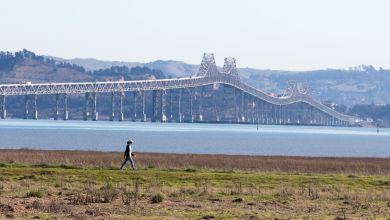 What we can learn from two Delta variant outbreaks in Marin