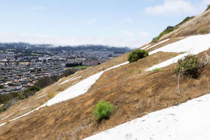 Hikers can walk a 1.2 mile loop trail to the South San Francisco Sign on Sign Hill in South San Francisco, Calif. on June 12, 2021.
