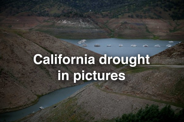 California drought: $500-a-day water fines passed - SFGate