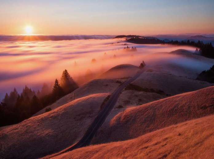 Mount TamalpaisNicholas Steinberg's stunning fog photographs capture the essence of Bay Area's famed weather phenomenon. Photo: Courtesy Nicholas Steinberg