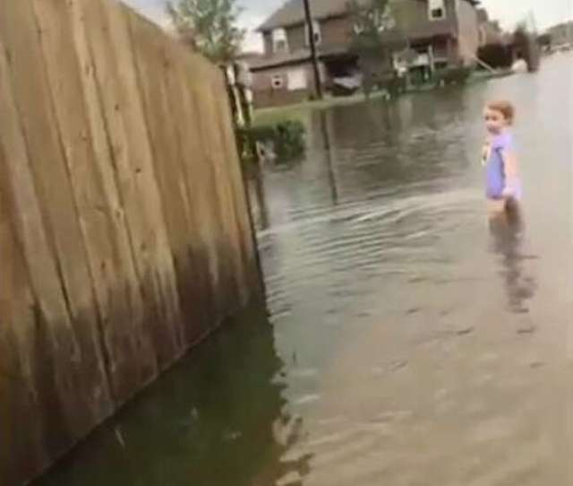 Video Girl In Diaper Clutching Sippy Cup Wanders Alone In Harvey Floodwaters In Pearland