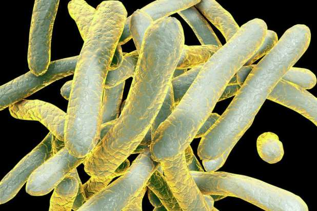 People at risk for tuberculosis can be tested via skin or blood tests, according to an information sheet from the Centers for Disease Control. Both tests look for the body's reaction to the germs that cause tuberculosis. Photo: KATERYNA KON/SCIENCE PHOTO LIBRARY/Getty Images/Science Photo Library RF