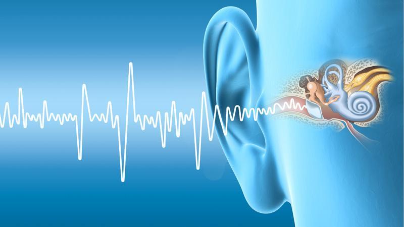 Hörsturz - Alarm im Innenohr