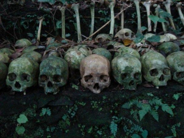 Как в Индонезии трупов хоронят или зомби уже среди нас