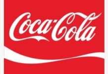 Coca-Cola Company Executive Recruitment for Senior Manager, Strategy, Planning and Innovation