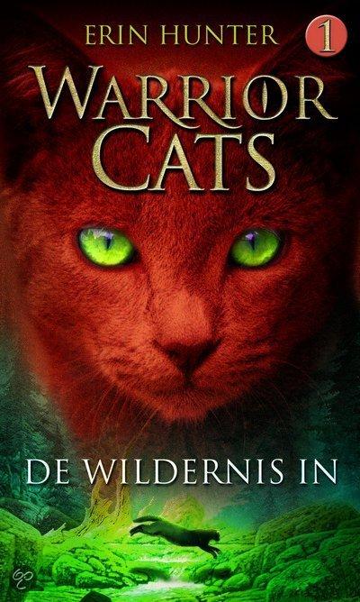 Afbeeldingsresultaat voor warrior cats de wildernis in